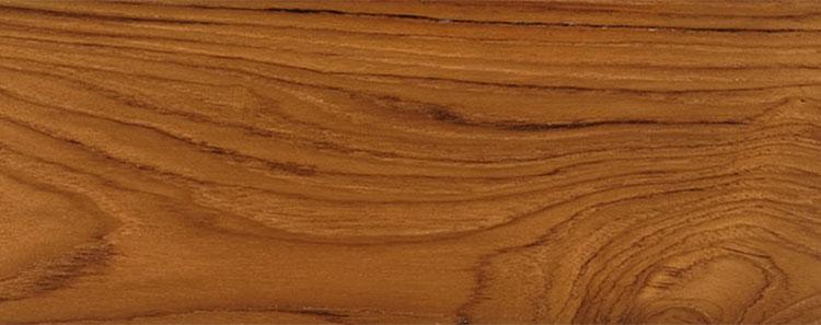 Espécies de madeiras brasileiras